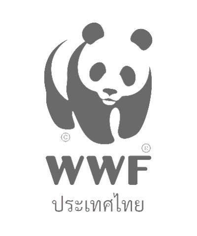wwf2thaiwrstling-400x480.png