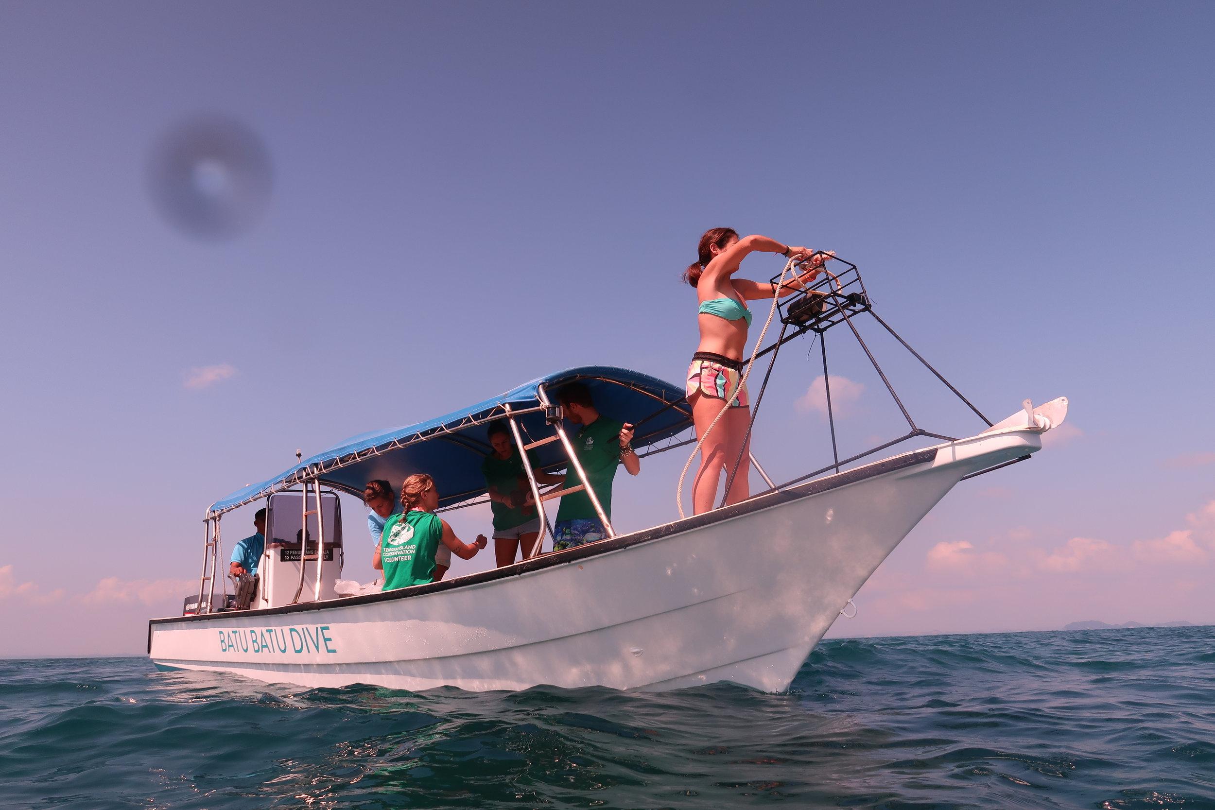 Baited Remote Underwater Video Stations (BRUVS).JPG
