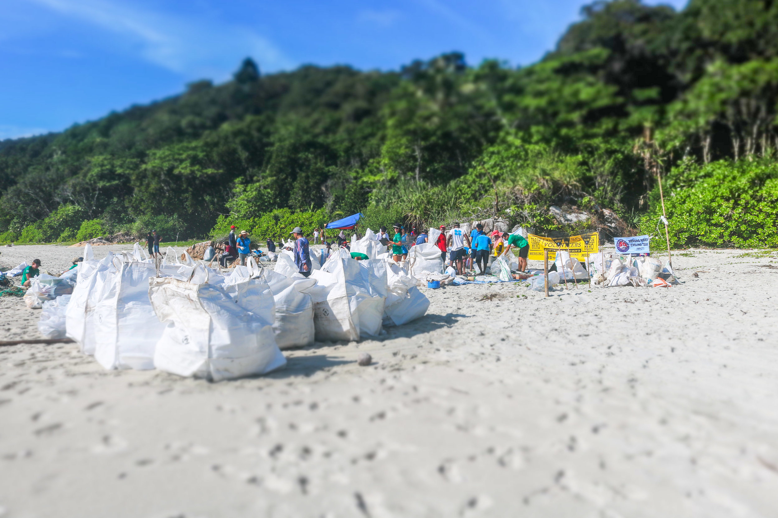 World Ocean Day Community Beach Clean 3.jpg