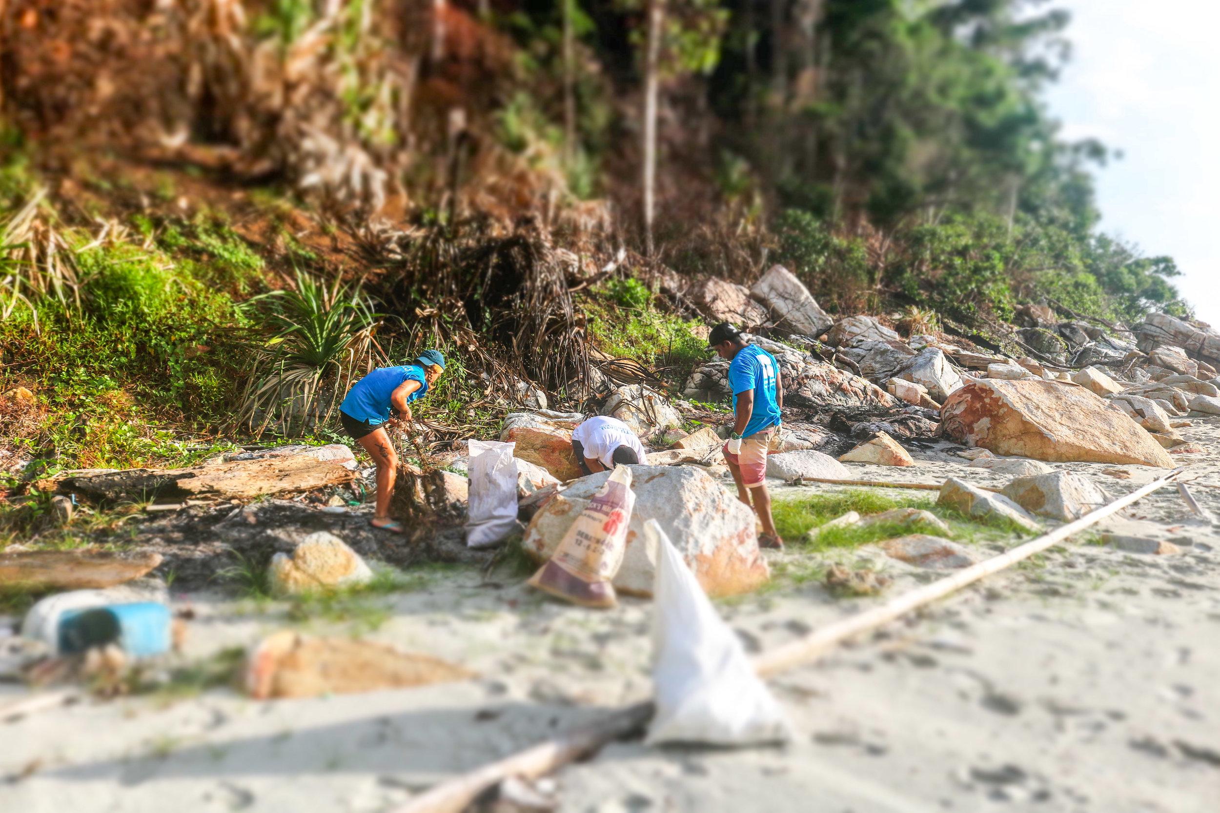 World Ocean Day Community Beach Clean 2.jpg