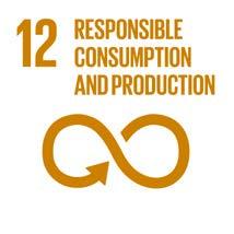 responsible consumption.jpg