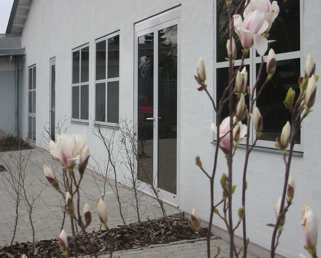 Gård med tulipantræ 7127.jpg