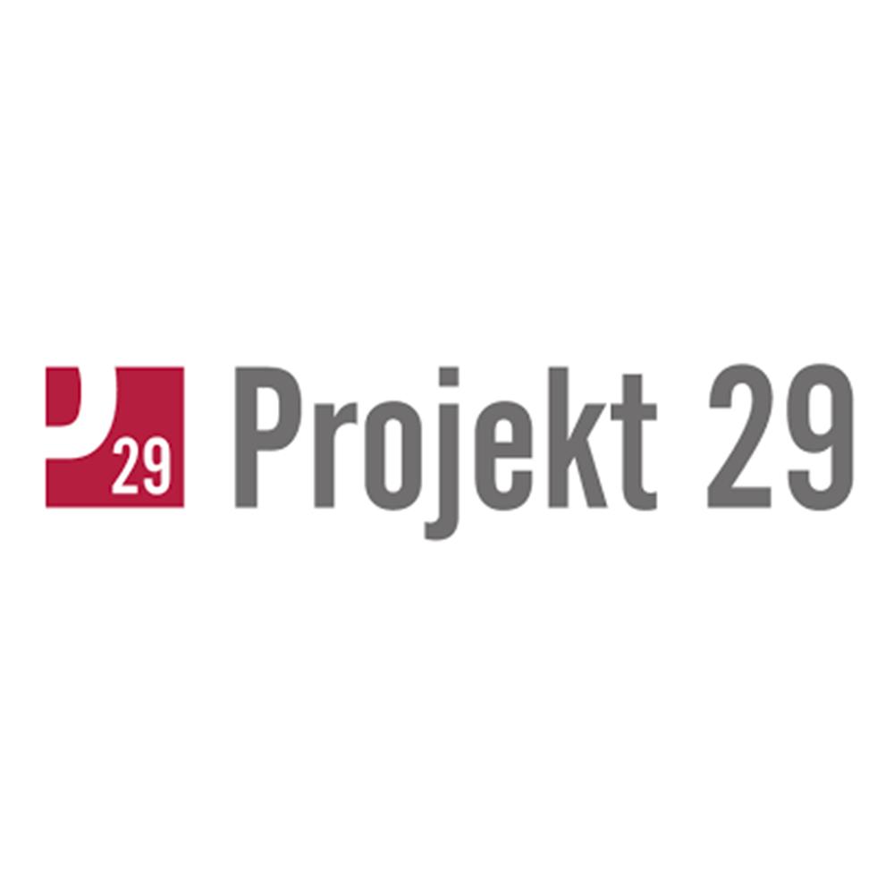 projekt 29.png