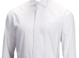 White Shirt Victorian Collar