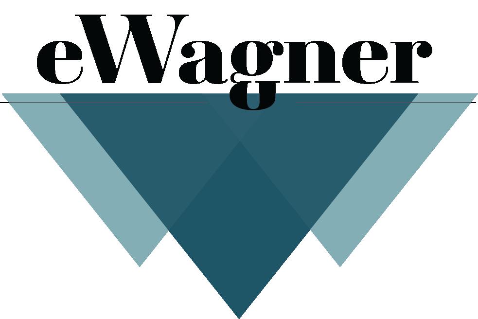 Shopify Web Design Boise, Idaho | eWagner Consulting
