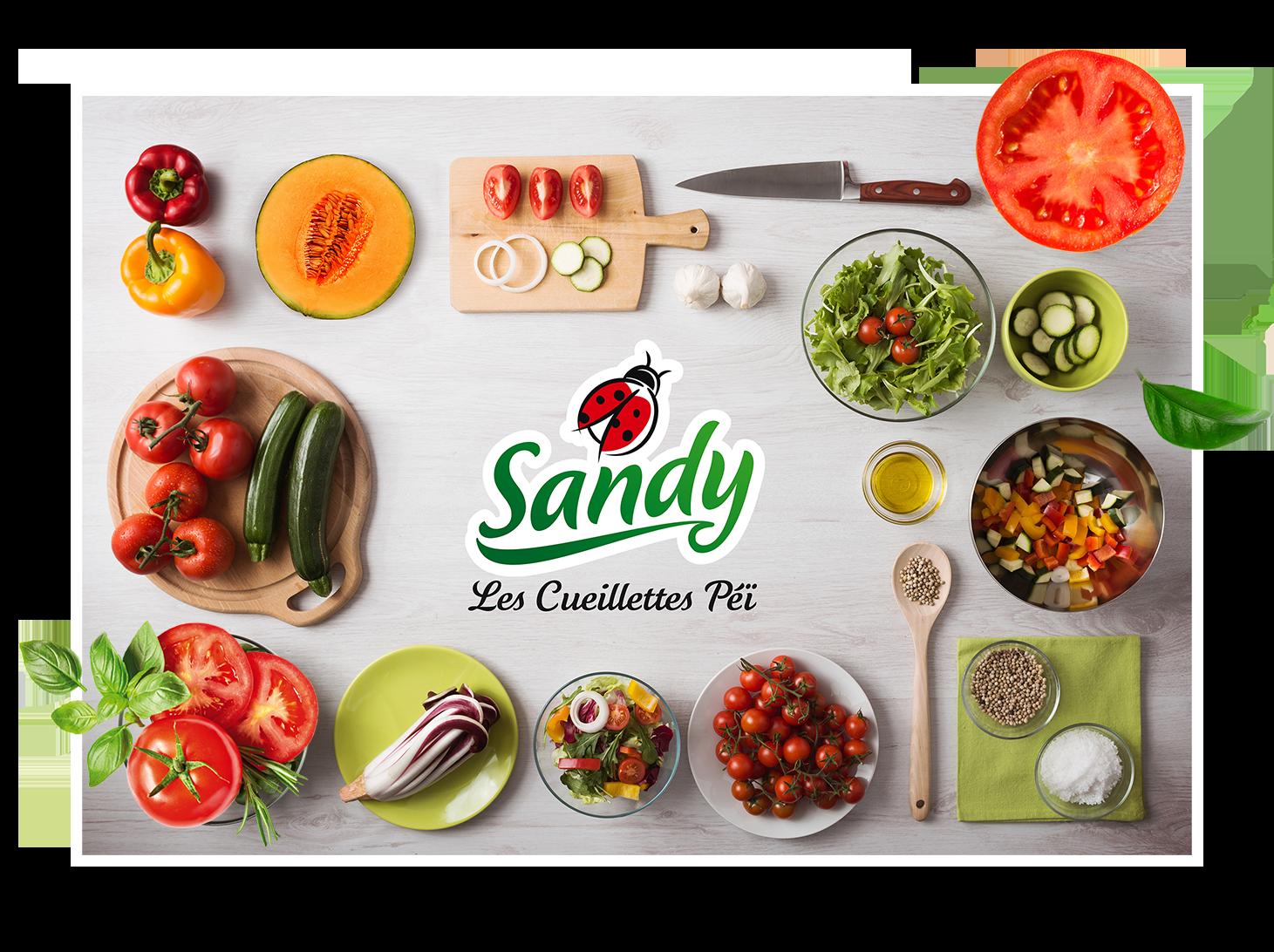 Sandy - Sandy, c'est une marque créée par deux agriculteurs réunionnais pour offrir le meilleur de la culture réunionnaise dans nos assiettes.Notre mission est d'offrir à chacun d'entre (nous) vous des produits maraîchers Péï, frais, sains et goûteux.100 % des légumes Sandy sont cultivés à La Réunion ! Et ils le seront toujours…
