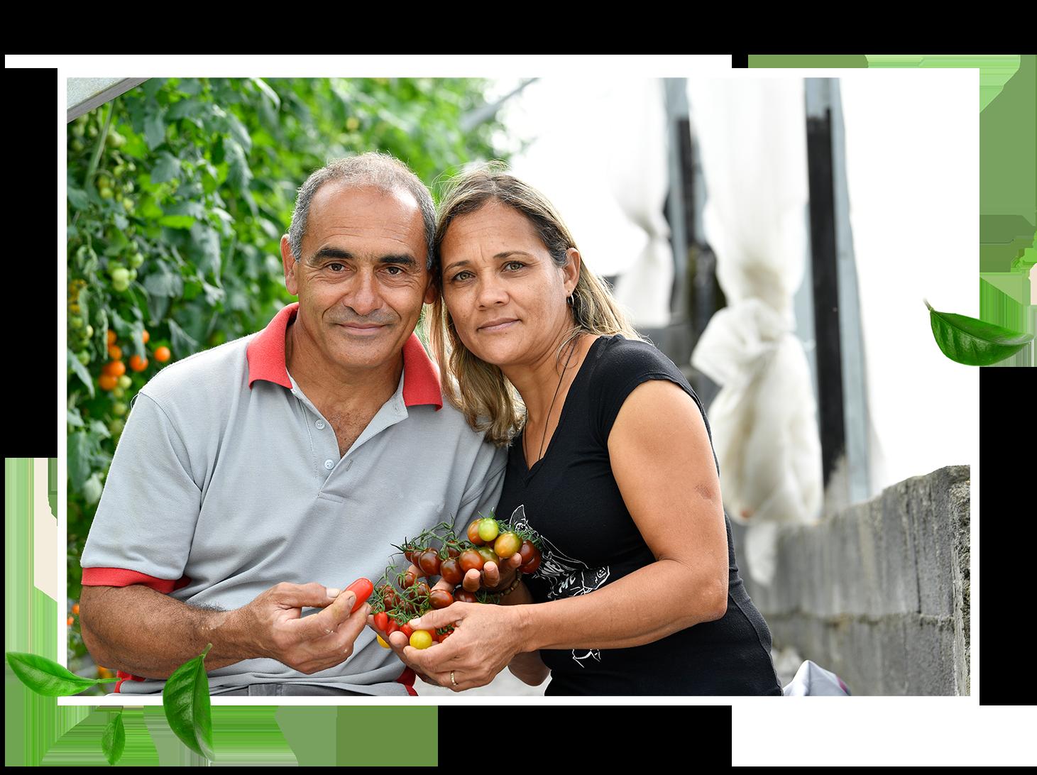 Sandy - Sandy, c'est une marque créée par deux agriculteurs réunionnais pour offrir le meilleur de la culture réunionnaise dans nos assiettes.Notre mission est d'offrir à chacun d'entre (nous) vous des produits maraîchers Péï, frais, sains et goûteux.