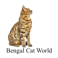 Bengal Cat World.png