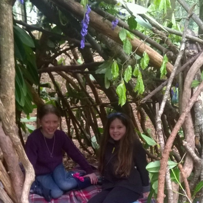 Build a Den - learn how to build a den using all natural materials.