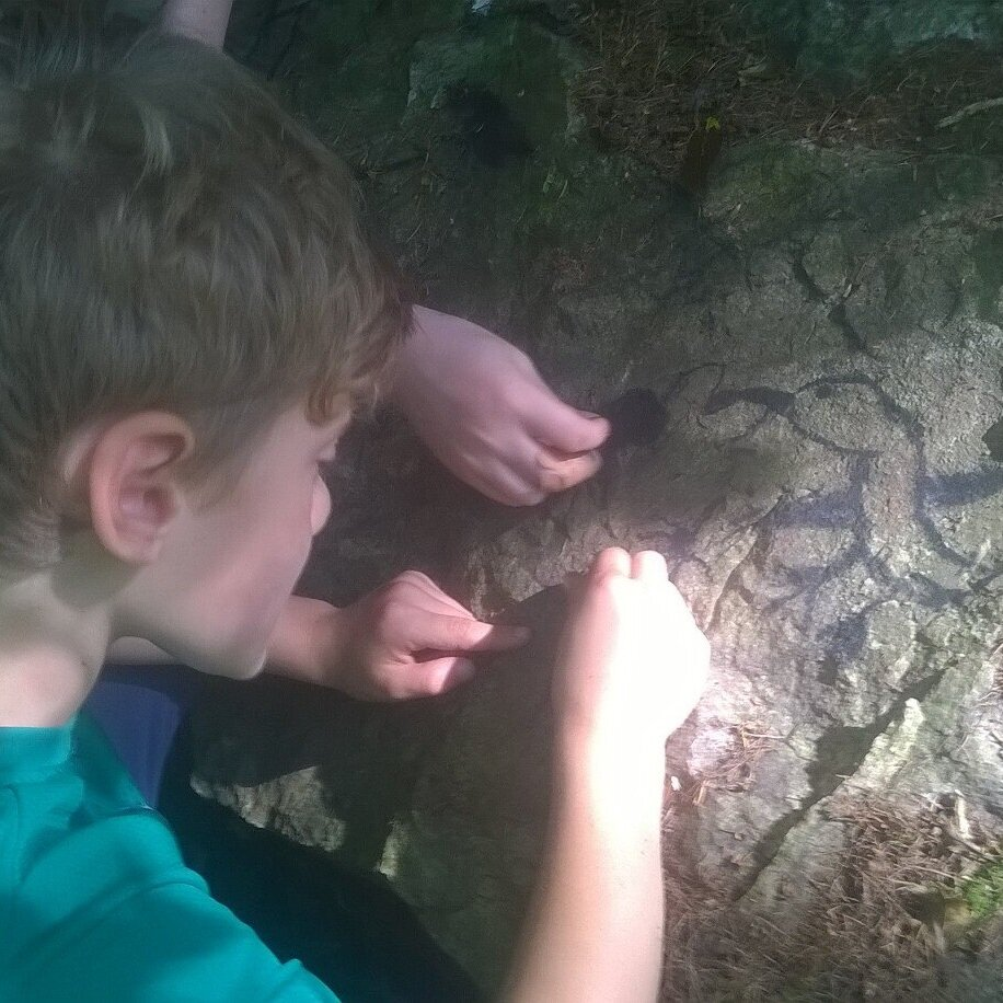Charcoal making and rock art - Make your own charcoal , use it to make some cool rock art and take some home to practice your drawing!