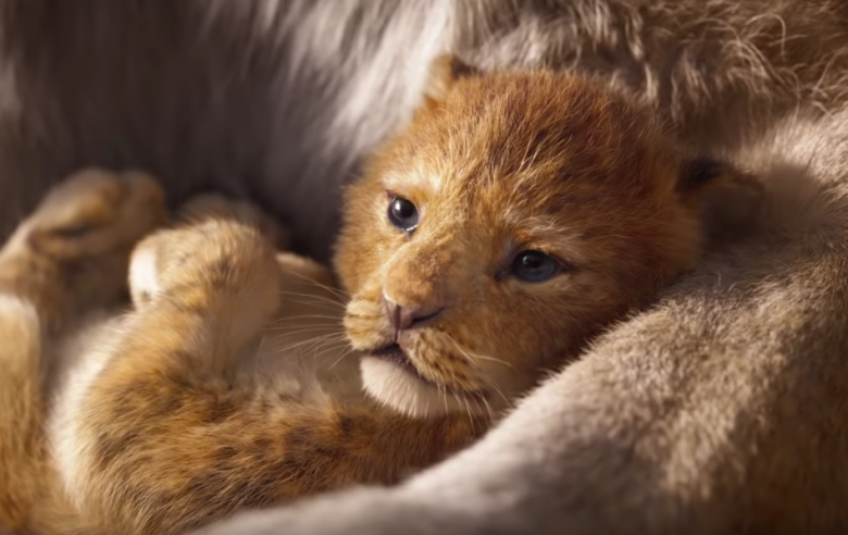 The Lion King - July 19th, 2019