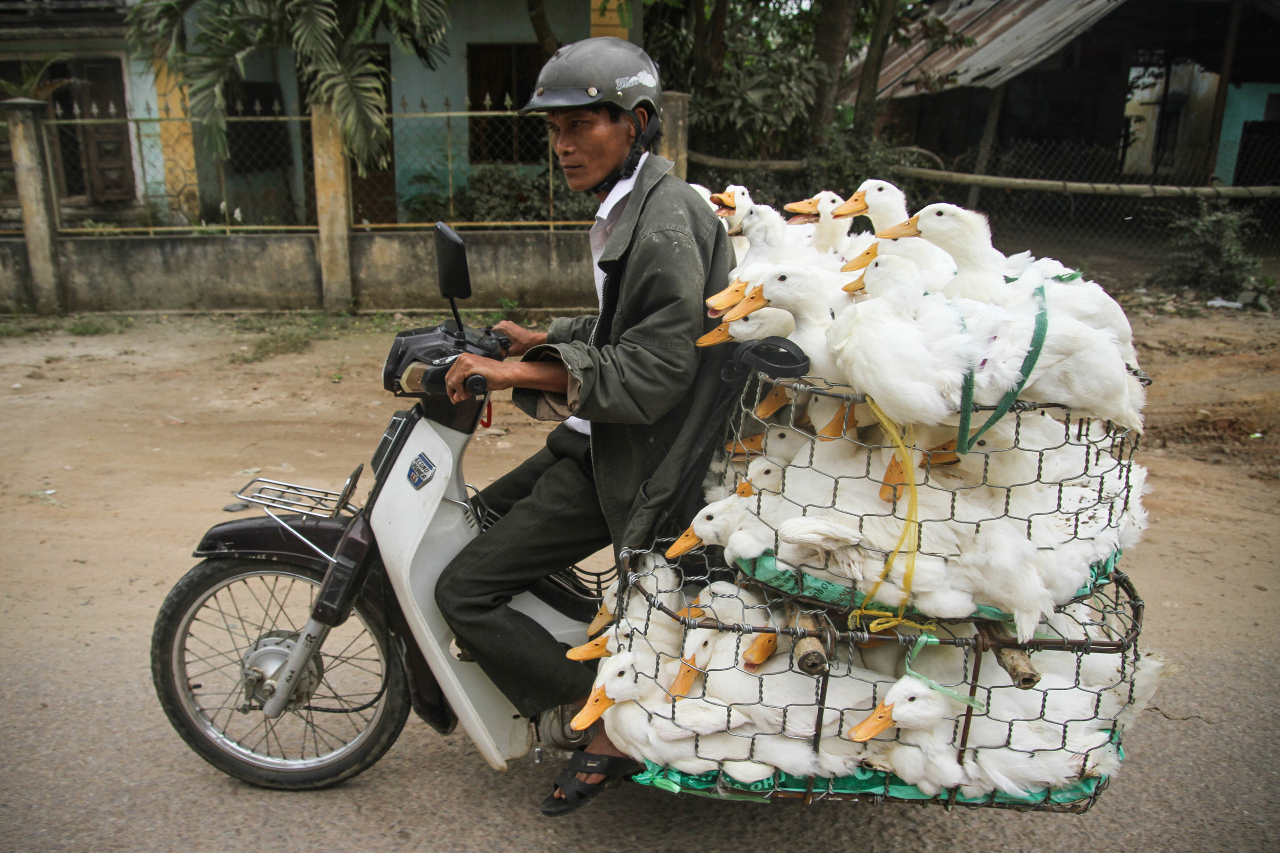 Vietnamese Delivery Man