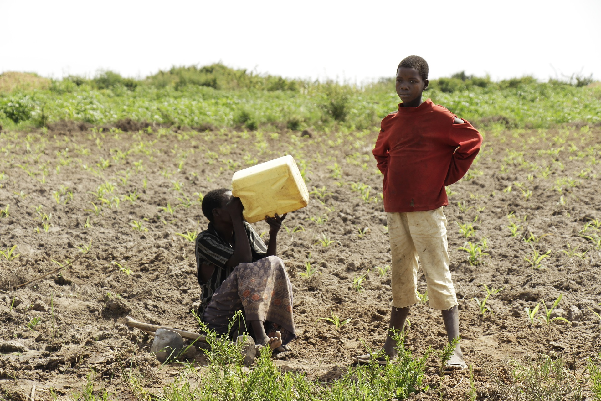 Monitoring crops in Uganda.  (photo: Charles Nambasi)