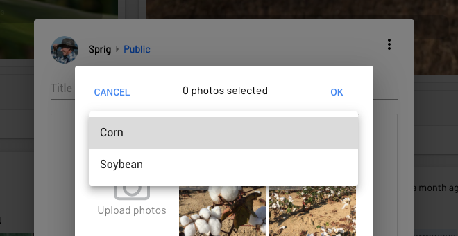 For disease recognition, please select your crop from the dropdown in the photo menu. The prediction may take a few minutes to process and will appear in the post.