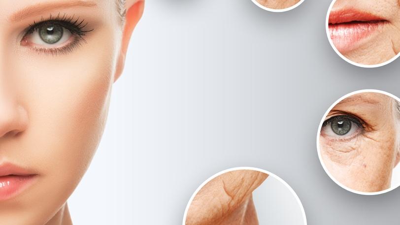Täydennyskoulutukset - Tästä osiosta löydät kauneudenhoitoalan täydentäviä koulutuksia, kuten pigmentoinnin teoriaa, värioppia, mainontaa- ja markkinointia sekä katelaskentaa. Valikoima täydentyy kysynnän mukaan.