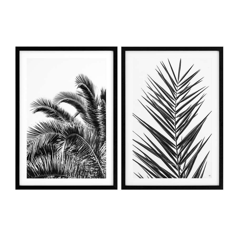 Eichholtz Prints Palm Set