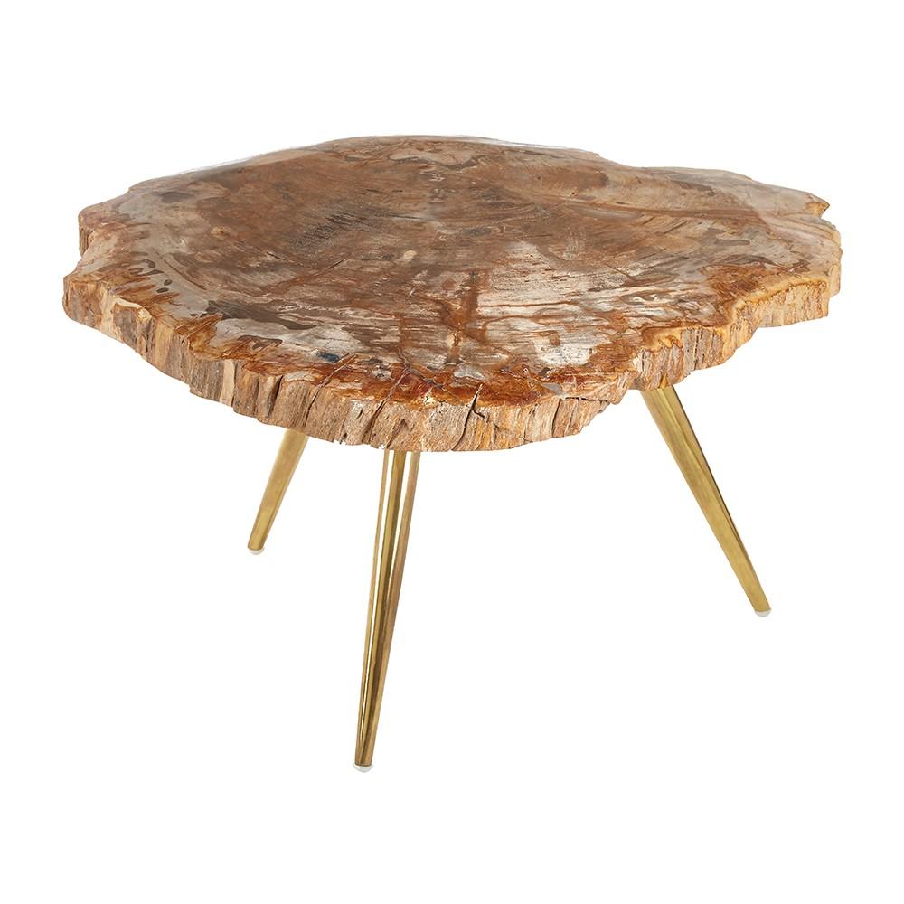 Curio Petrified Wood Coffee Table