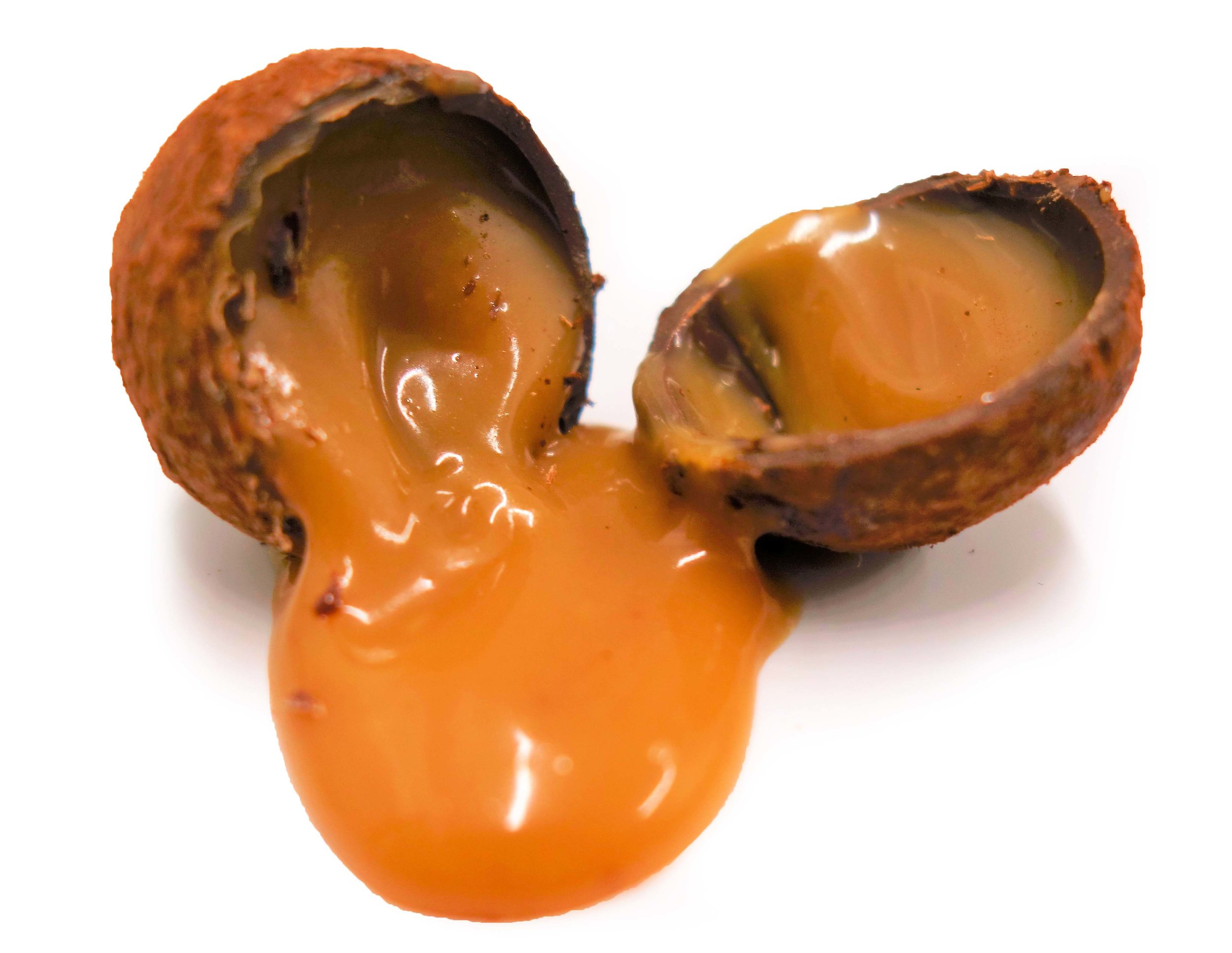Espresso Salted Caramel Truffle