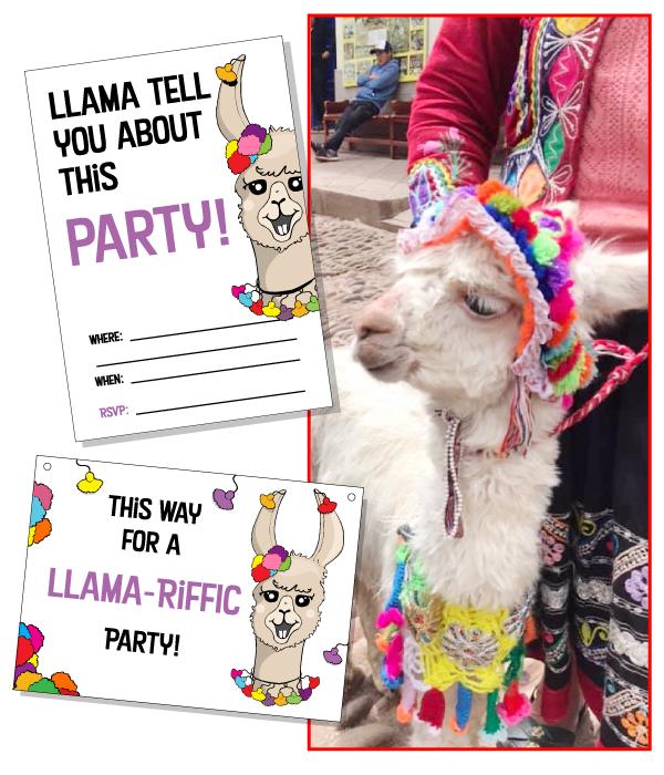 2019.Llama-Art-Inpired-Photo.png