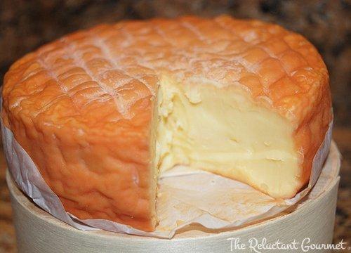 epoisses cheese.jpg
