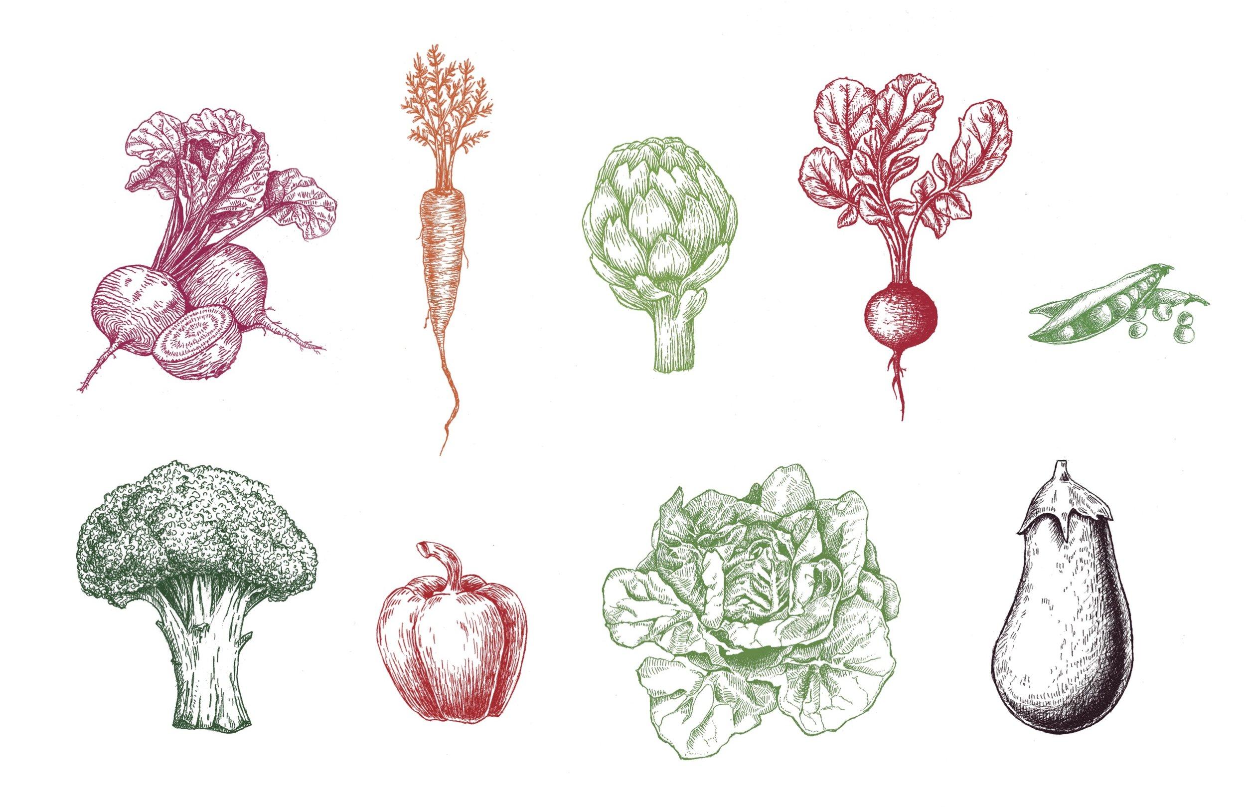 veggiesprint.jpg