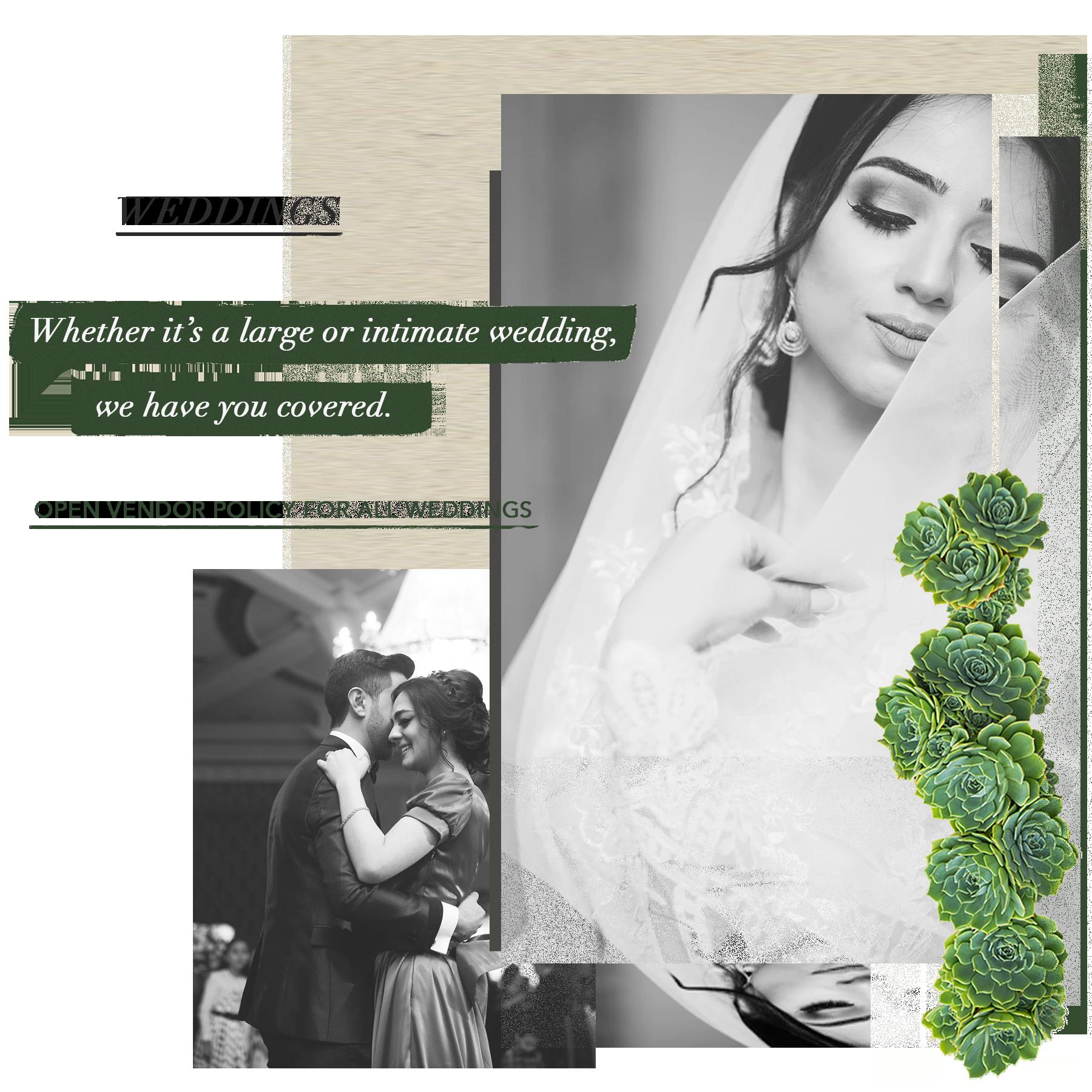 BVV_WebBLock_Weddings.png