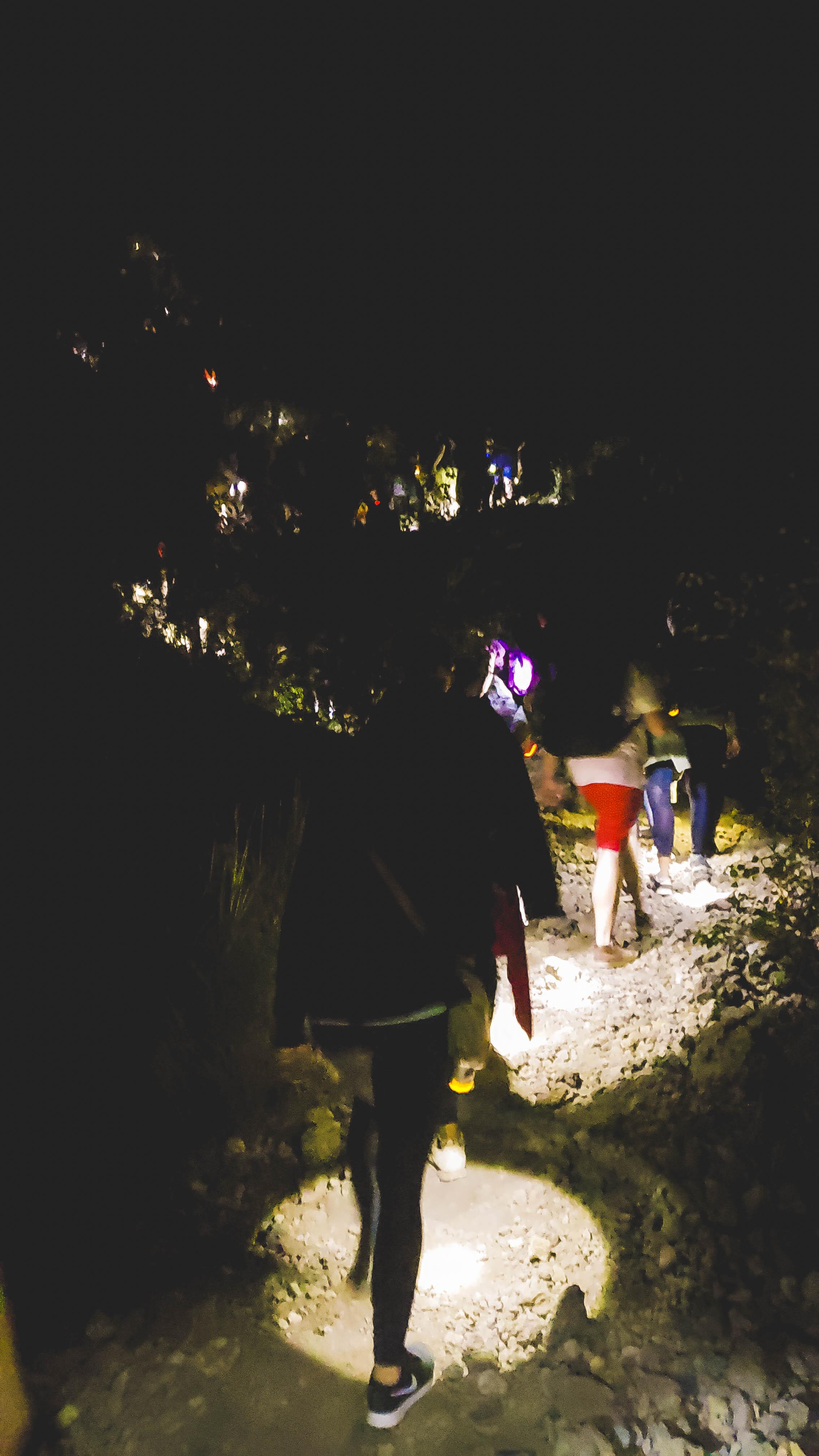 flashlight trail.jpg