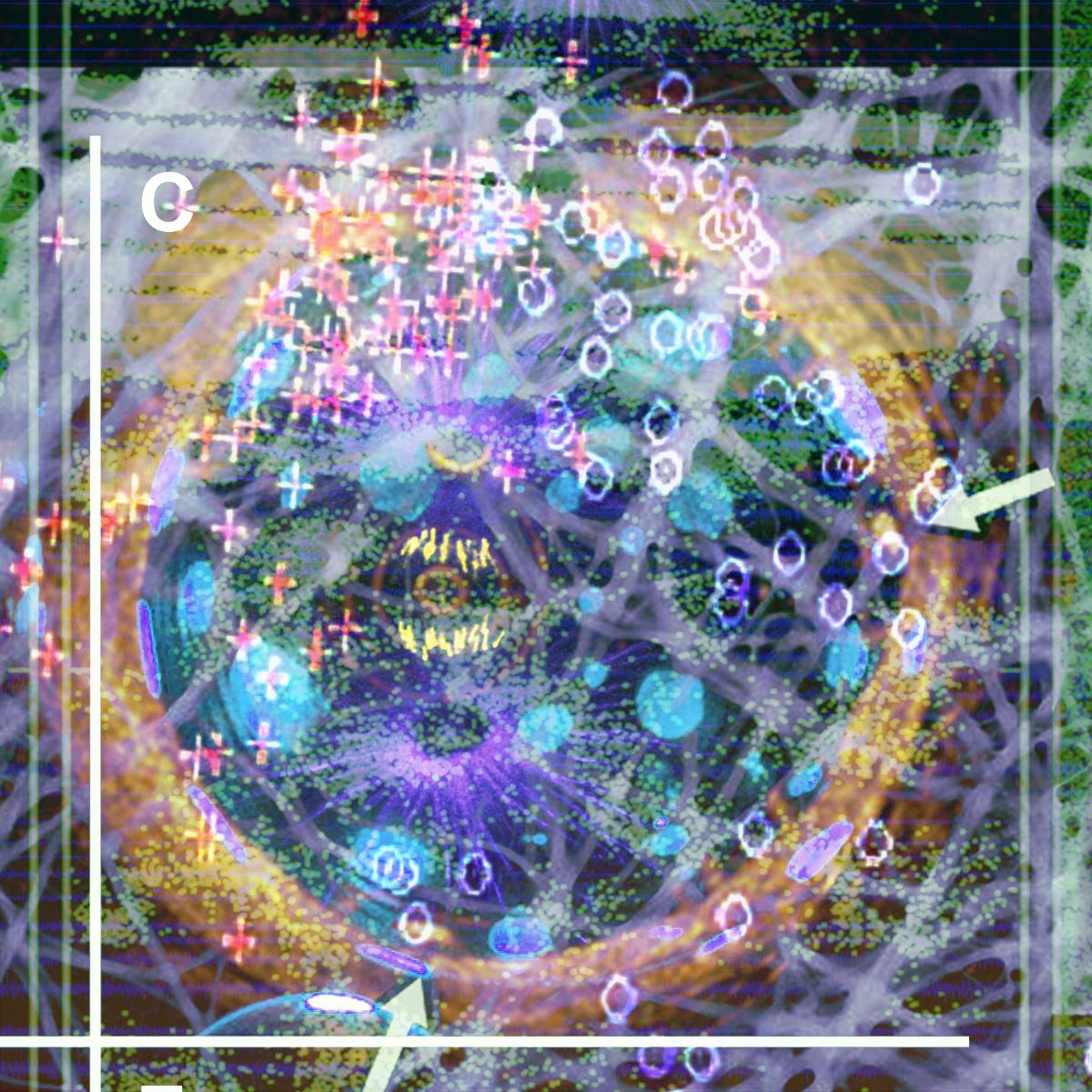 48_combos_023_48es copy.jpg