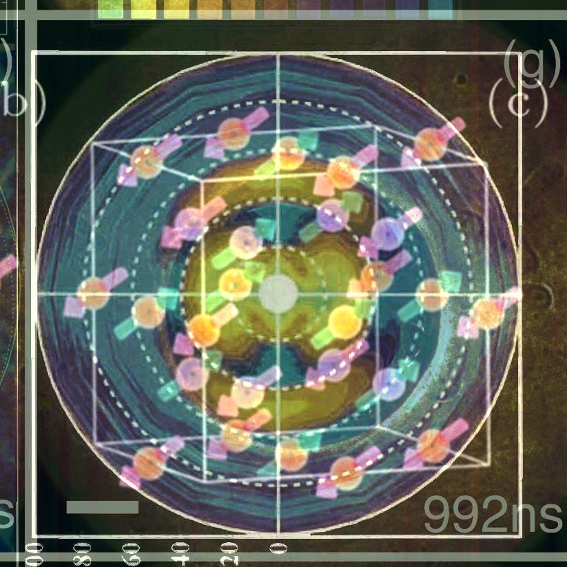 grid_selects_11.jpg