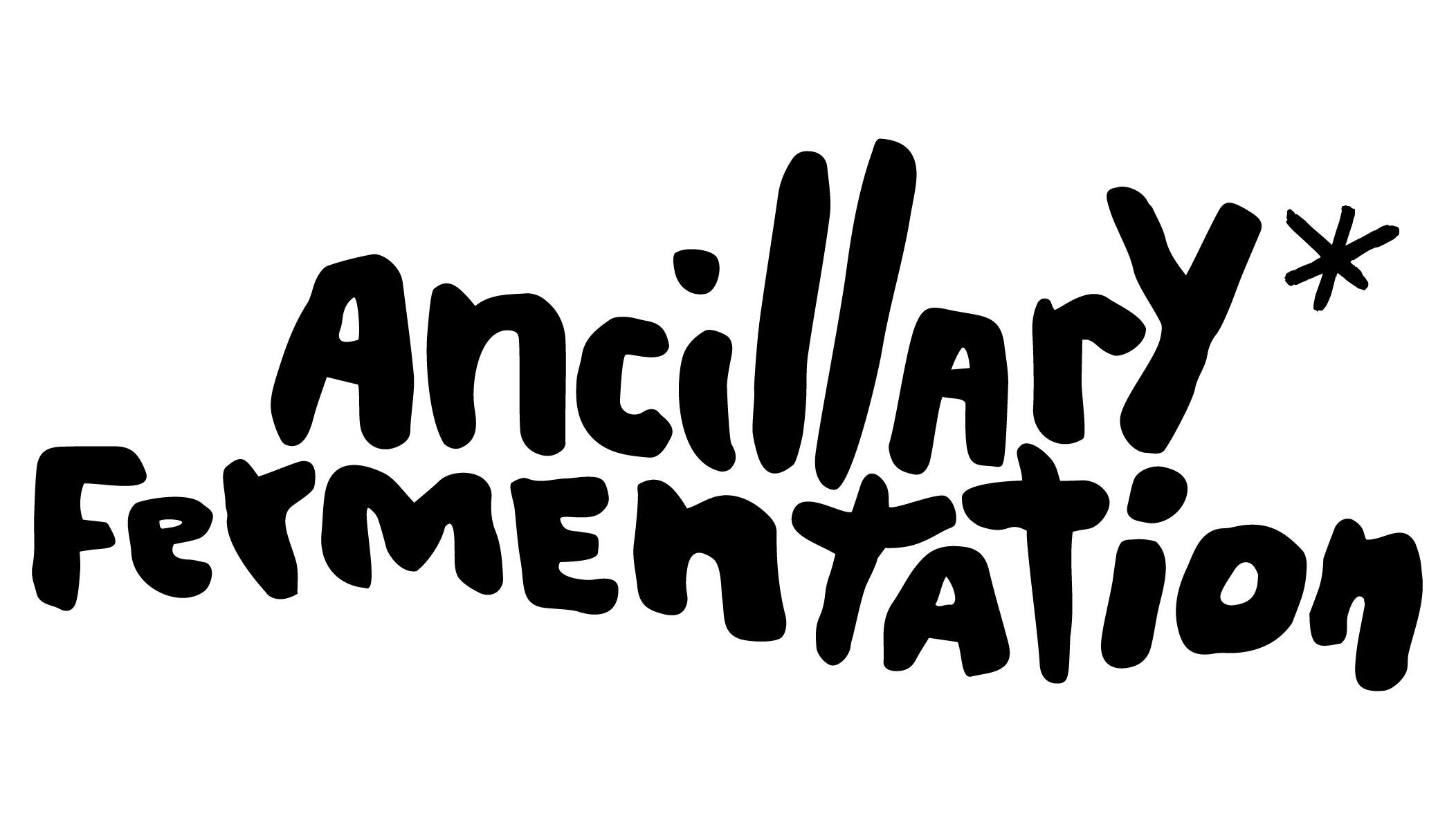 fullsizeoutput_2ed1+-+Ancillary+Fermenation.jpg