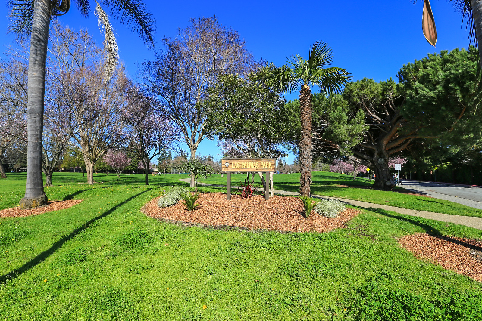 Las Palmas Park.jpg