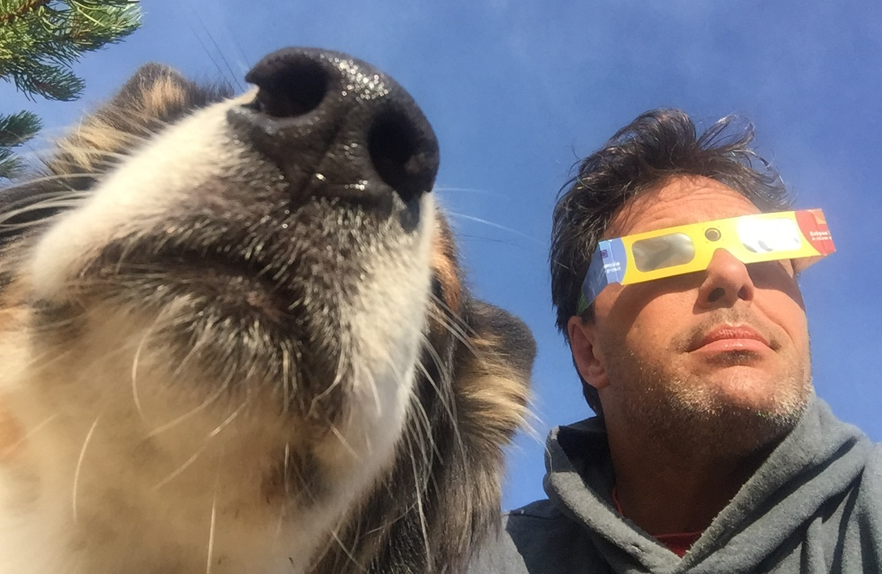 I usually don't look at the sun.But when I do, my dog and I take appropriate precautions. - Great American EclipseOchoco National Forest, OregonAugust 21, 2017