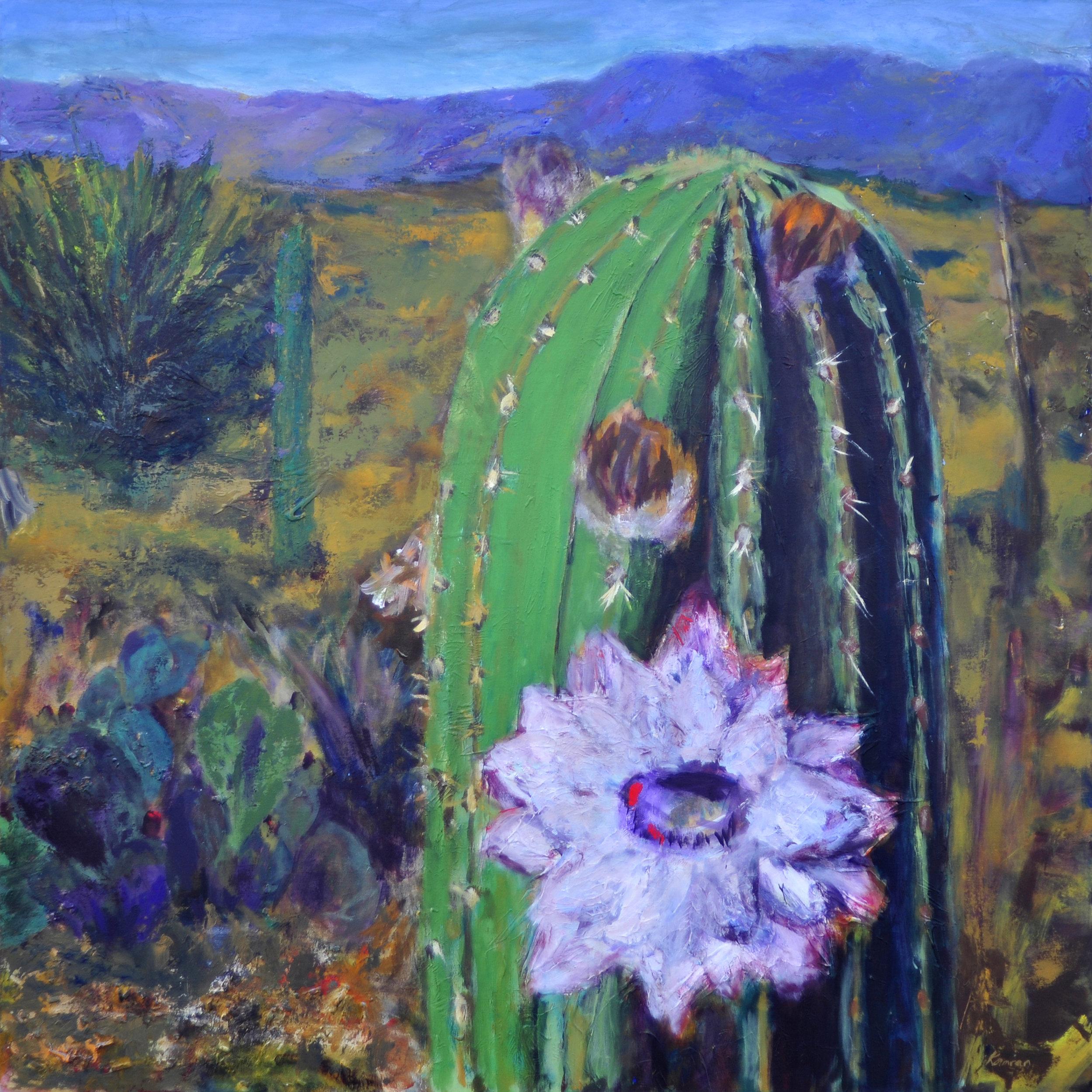 Mojave Flower