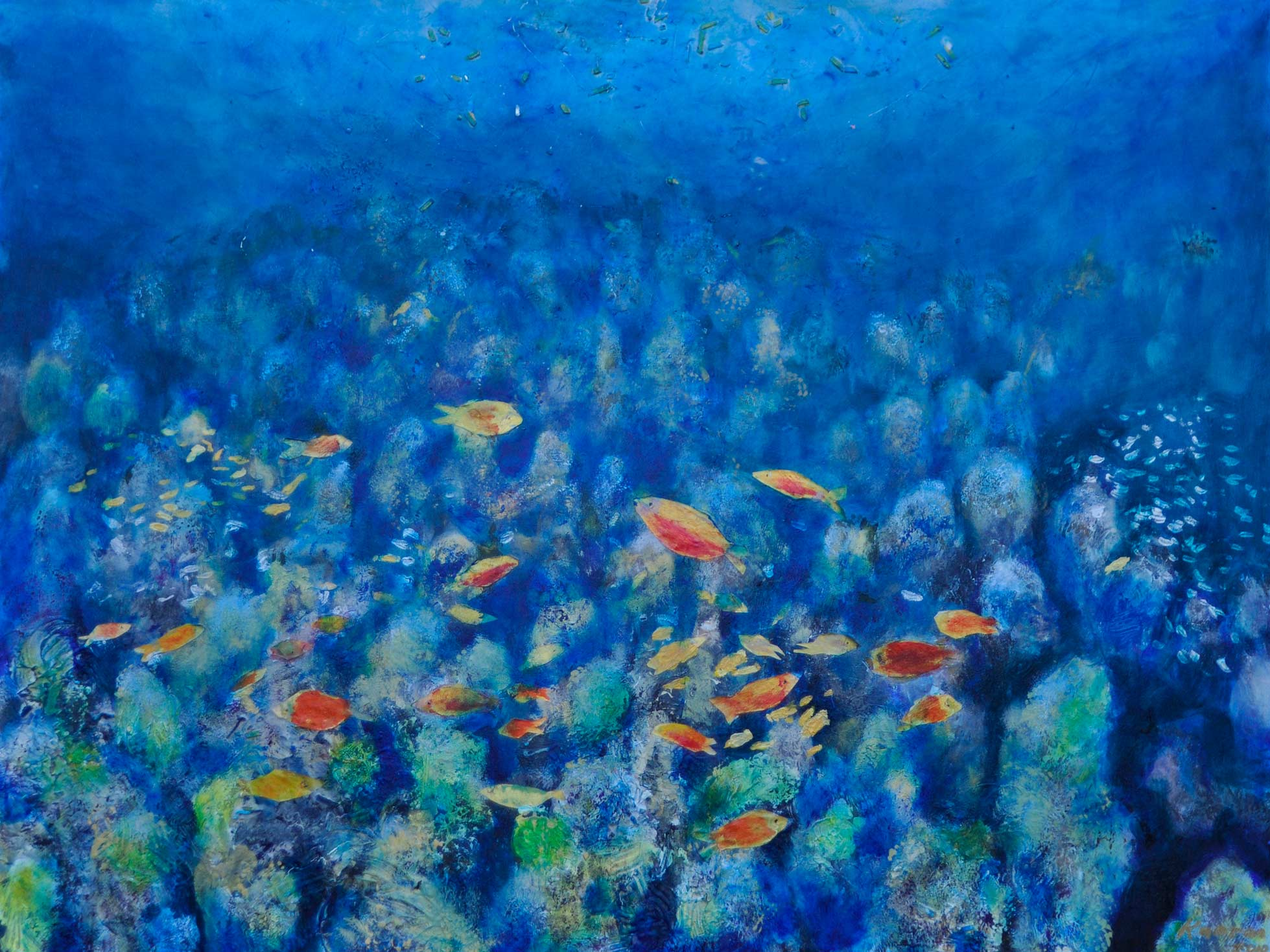 Catalina Reef