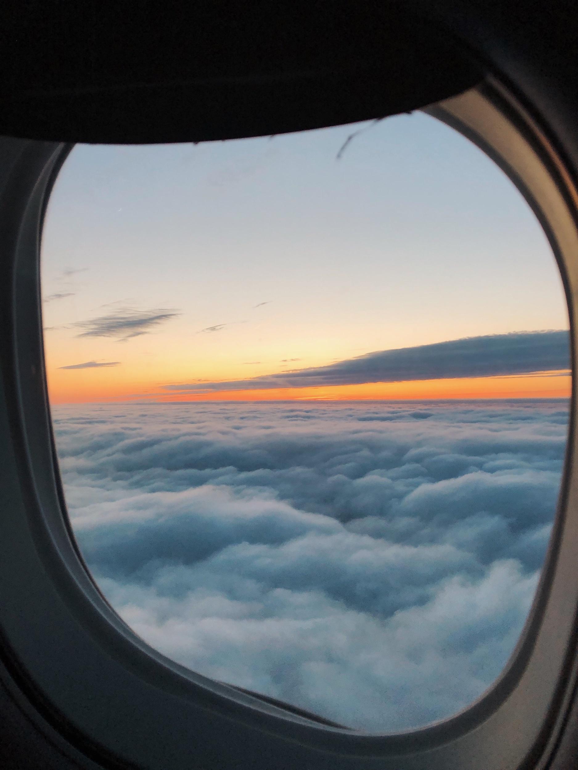 Window Dream