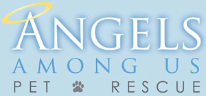 angels-rescue-logo-blue-sm.jpg