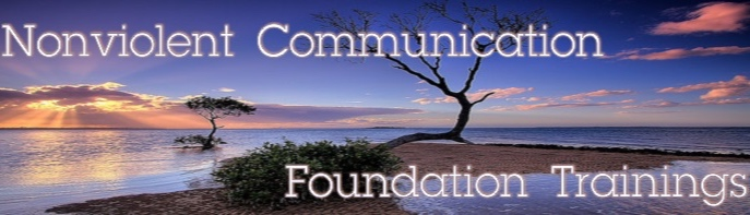 NVC-Foundation-Featured-Image.jpg