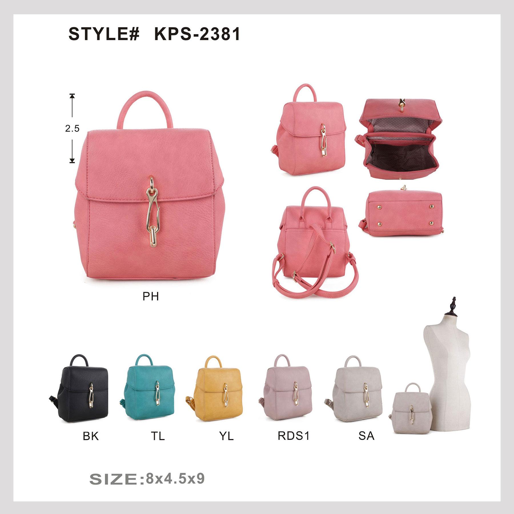 KPS-2381_1.jpg