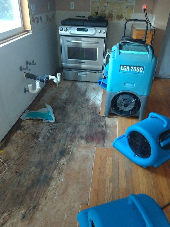 Kitchen - Water Damage Mitigation