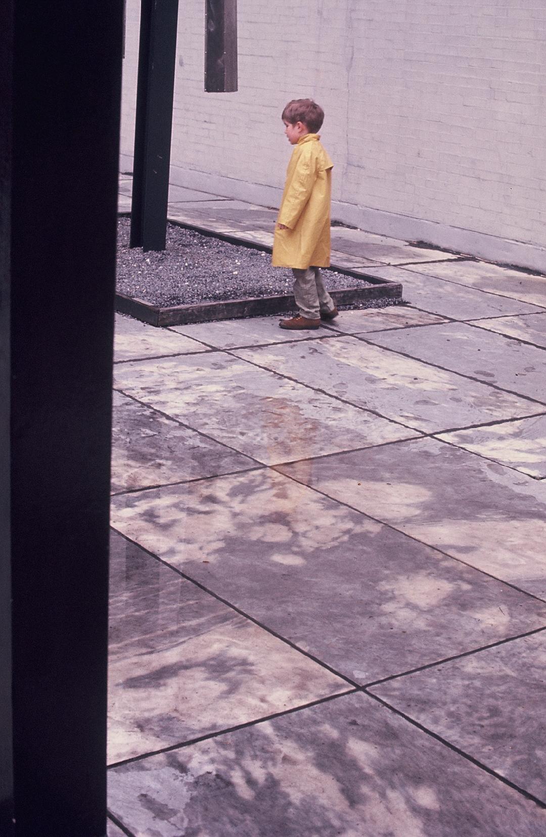 Boy in the rain, garden of Museum of Modern Art (1971)