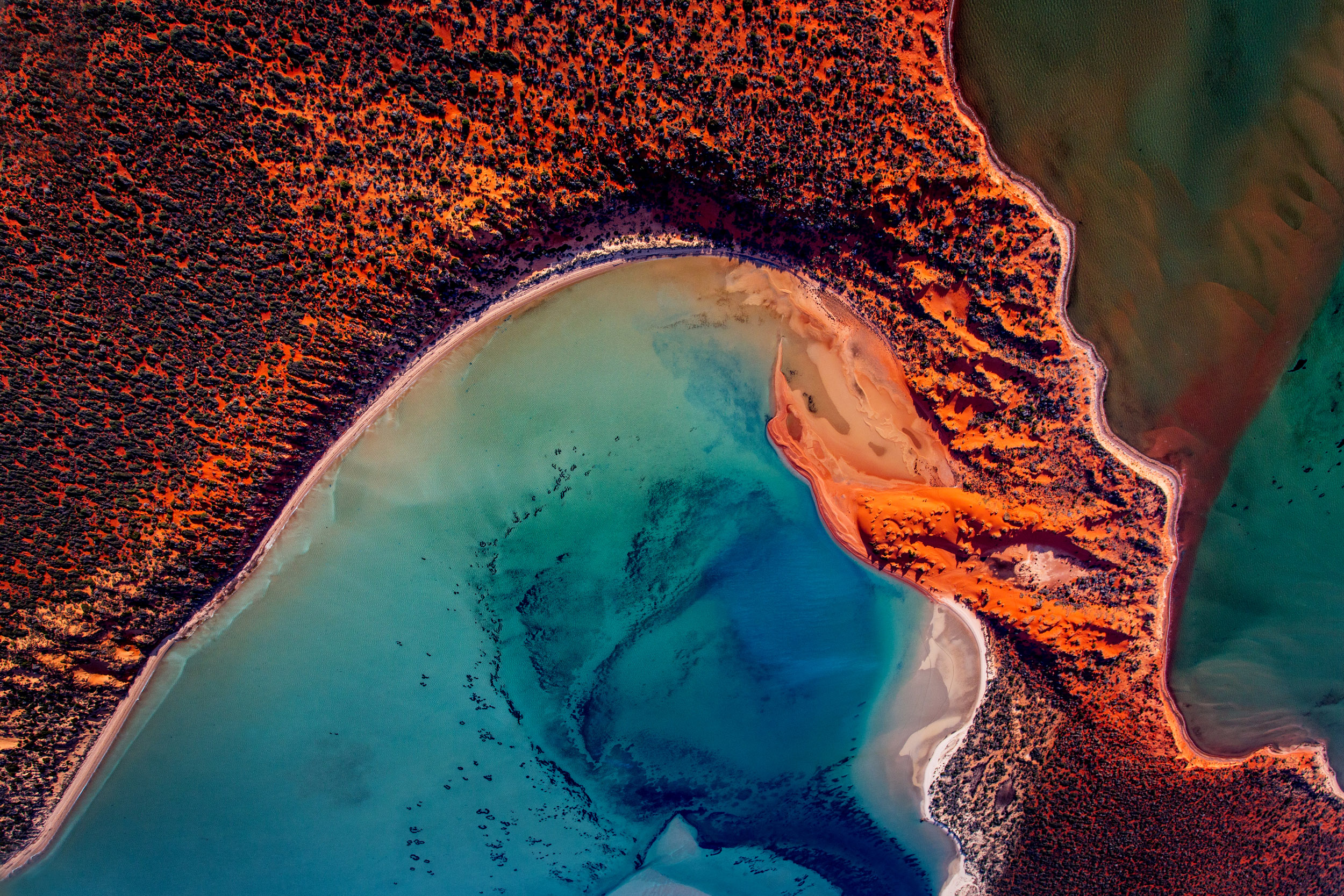 Shark-Bay-aerial-photo.jpg