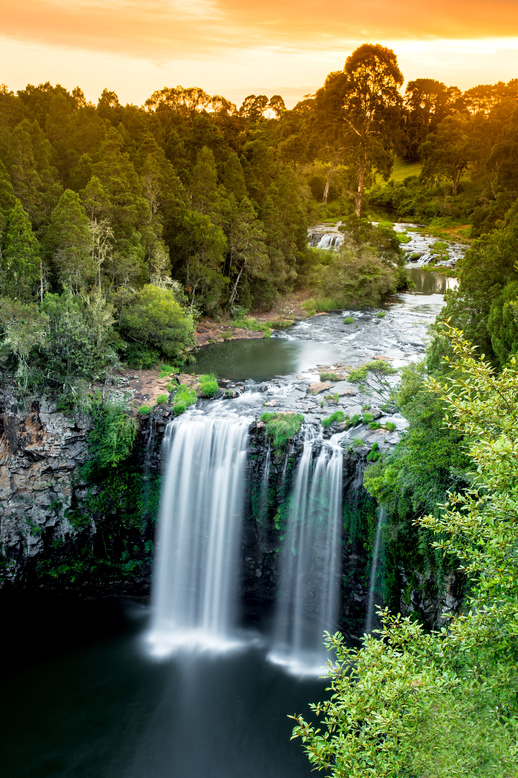 dangar-falls-dorrigo-nsw-coffs-coast.jpg