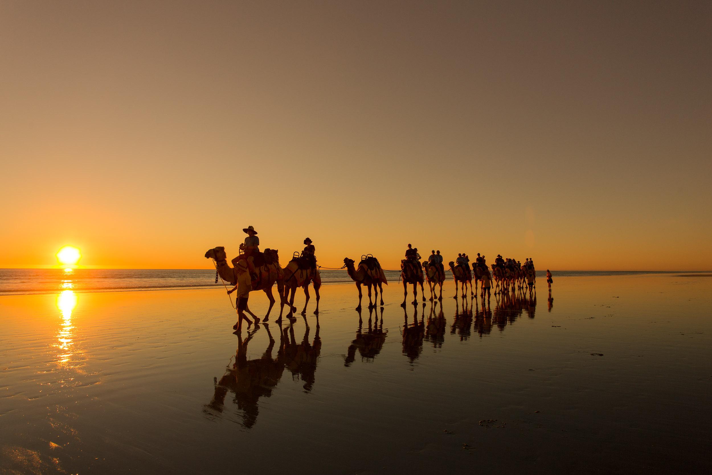 camel-rides-broome-western-australia.jpg