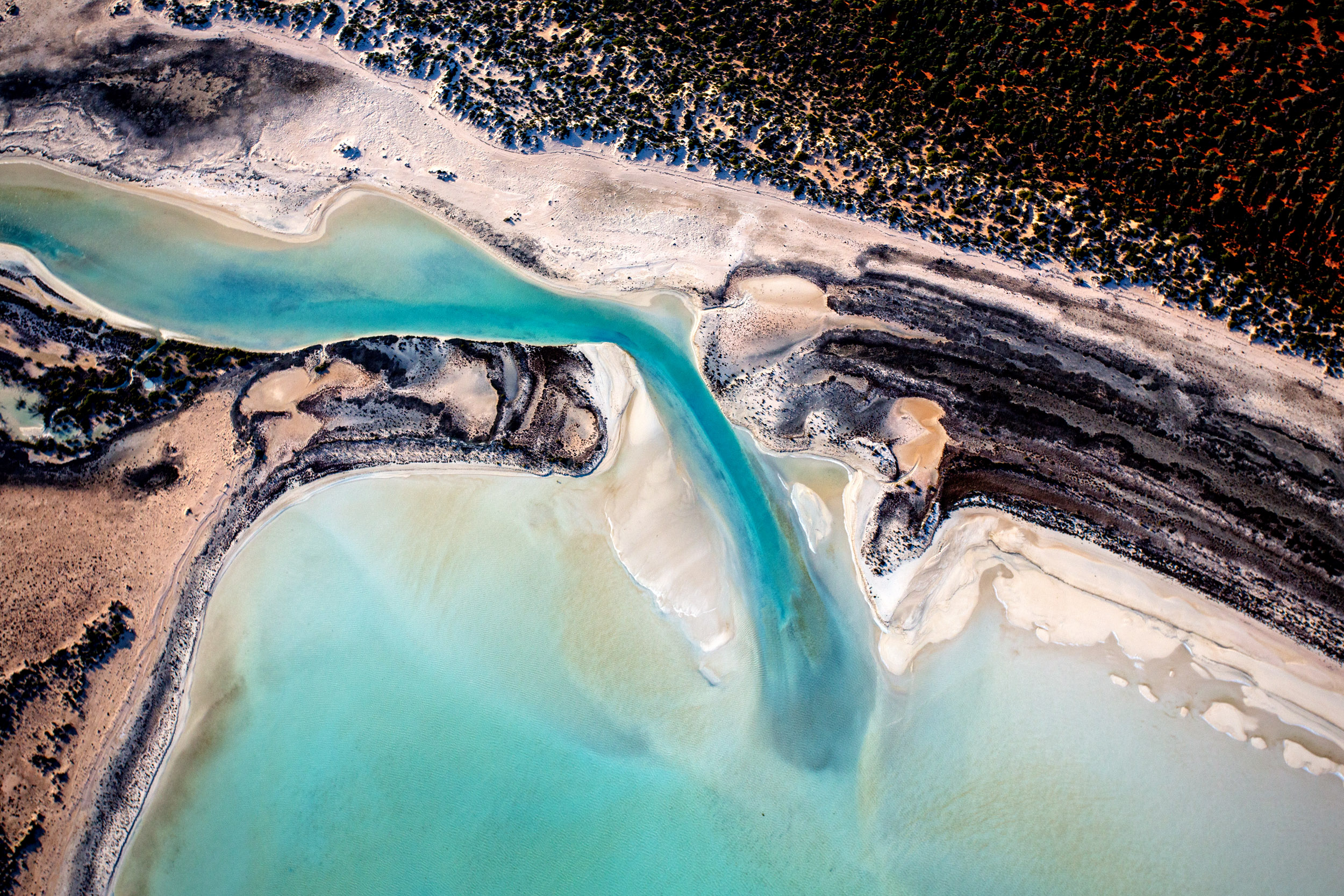 shark-bay-aerials-photographed-from-plane.jpg