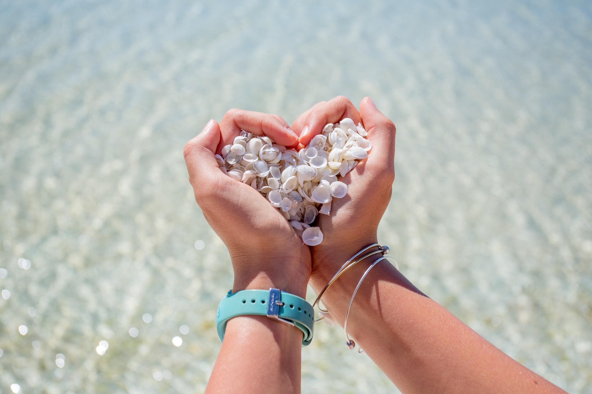 love-shell-beach-WA.jpg
