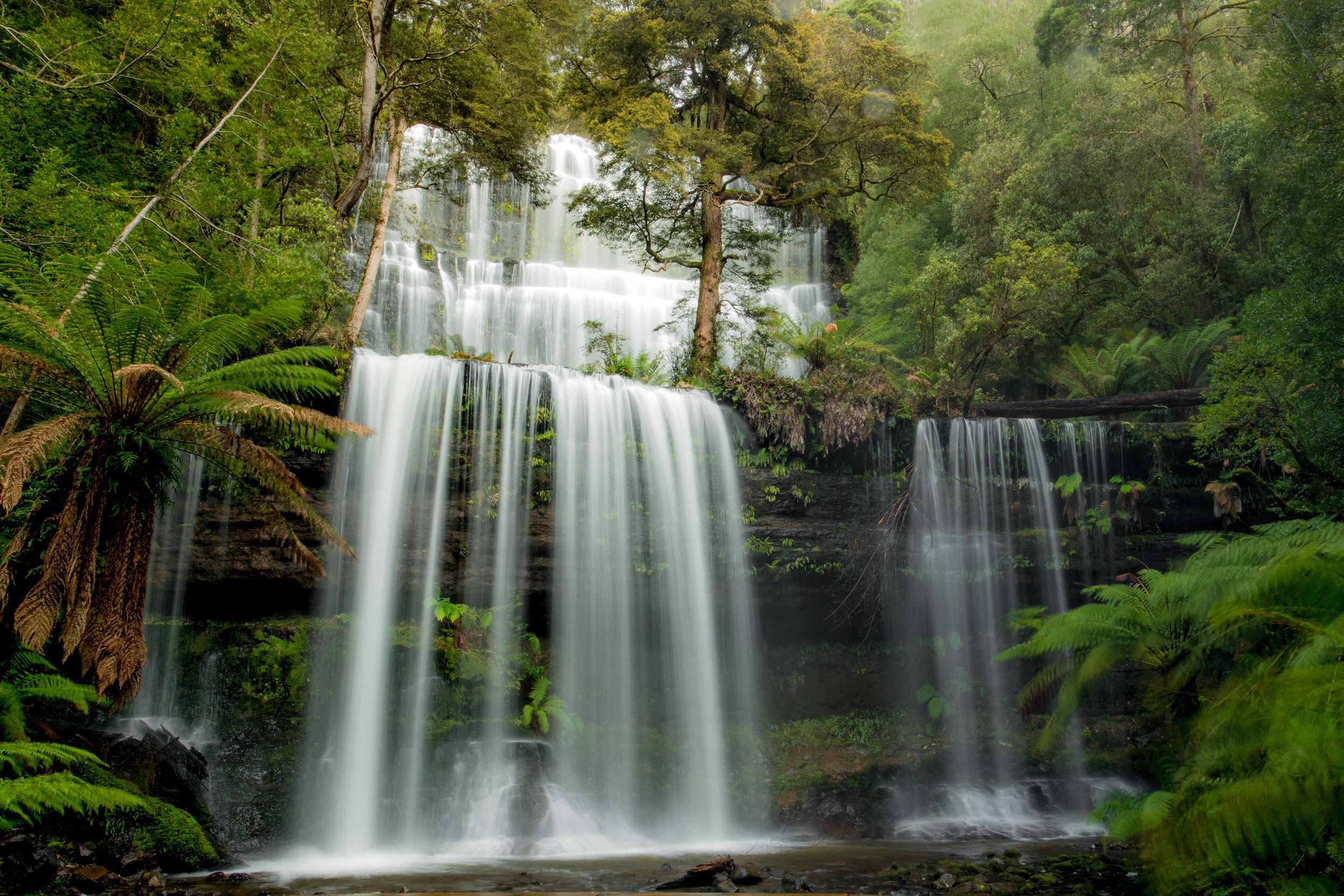 Russell-falls-rainforest-tasmania.jpg