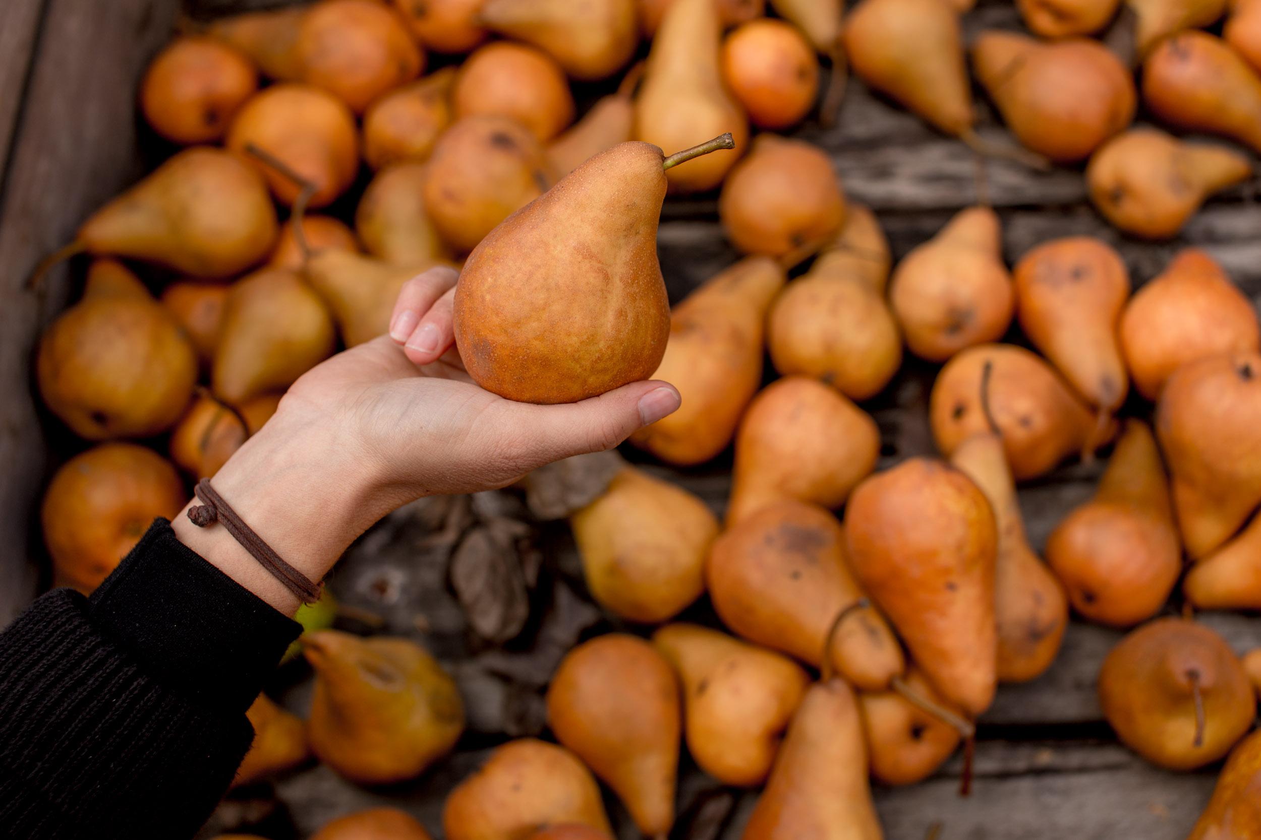 tasmanian-fresh-produce.jpg