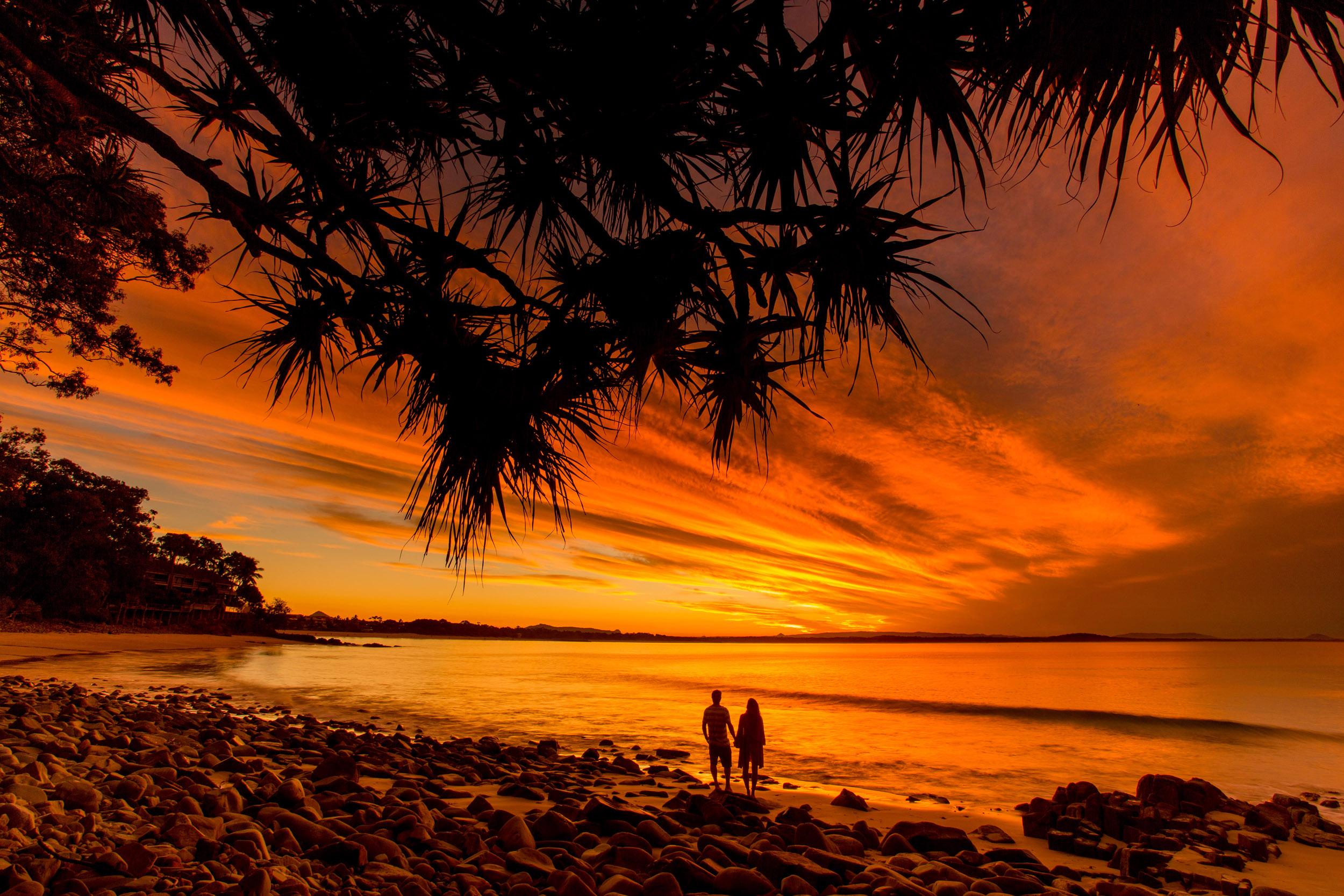 little-cove-noosa-heads-sunset-pandanus-trees.jpg