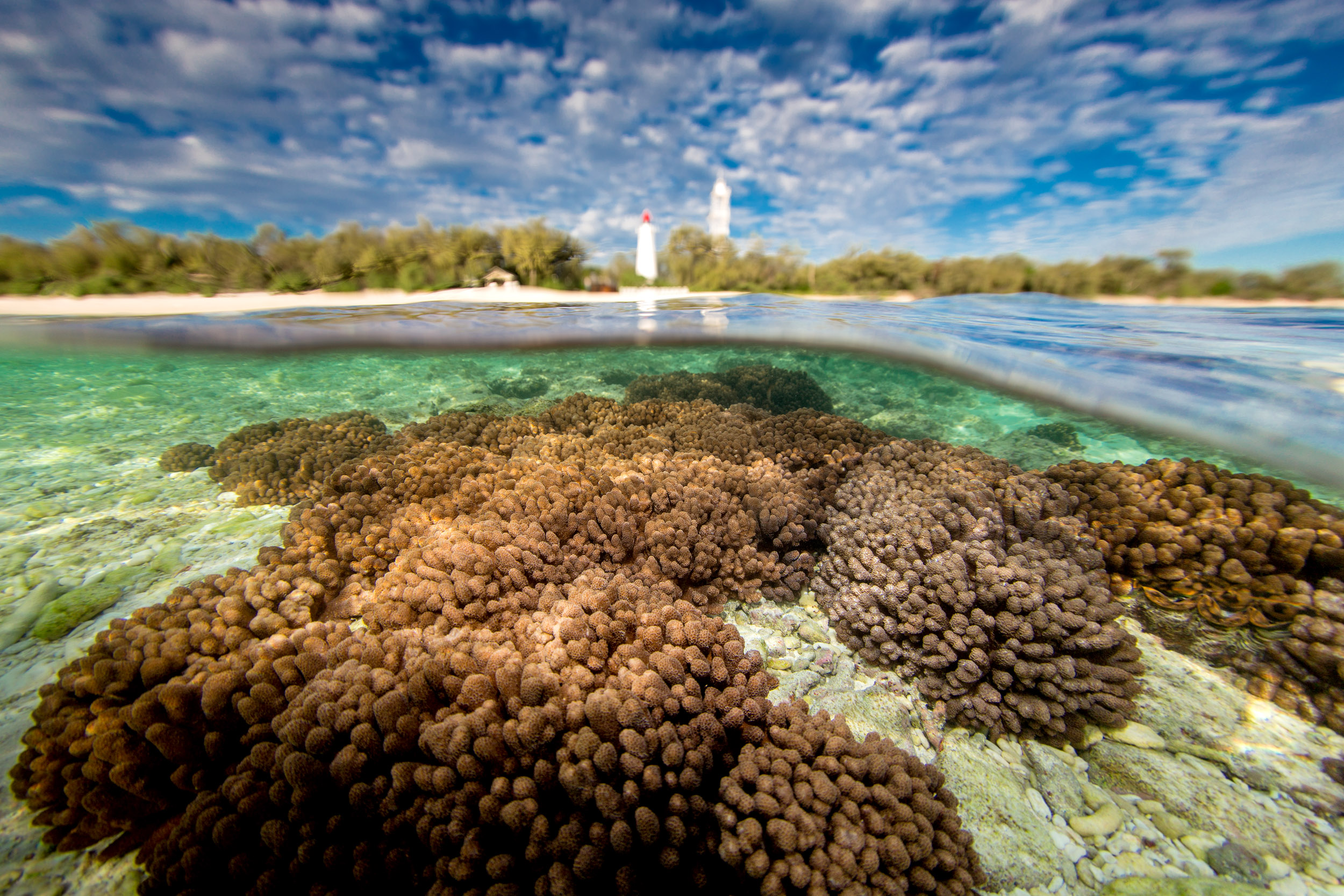 lady-elliot-island-lighthouse-great-barrier-reef.jpg
