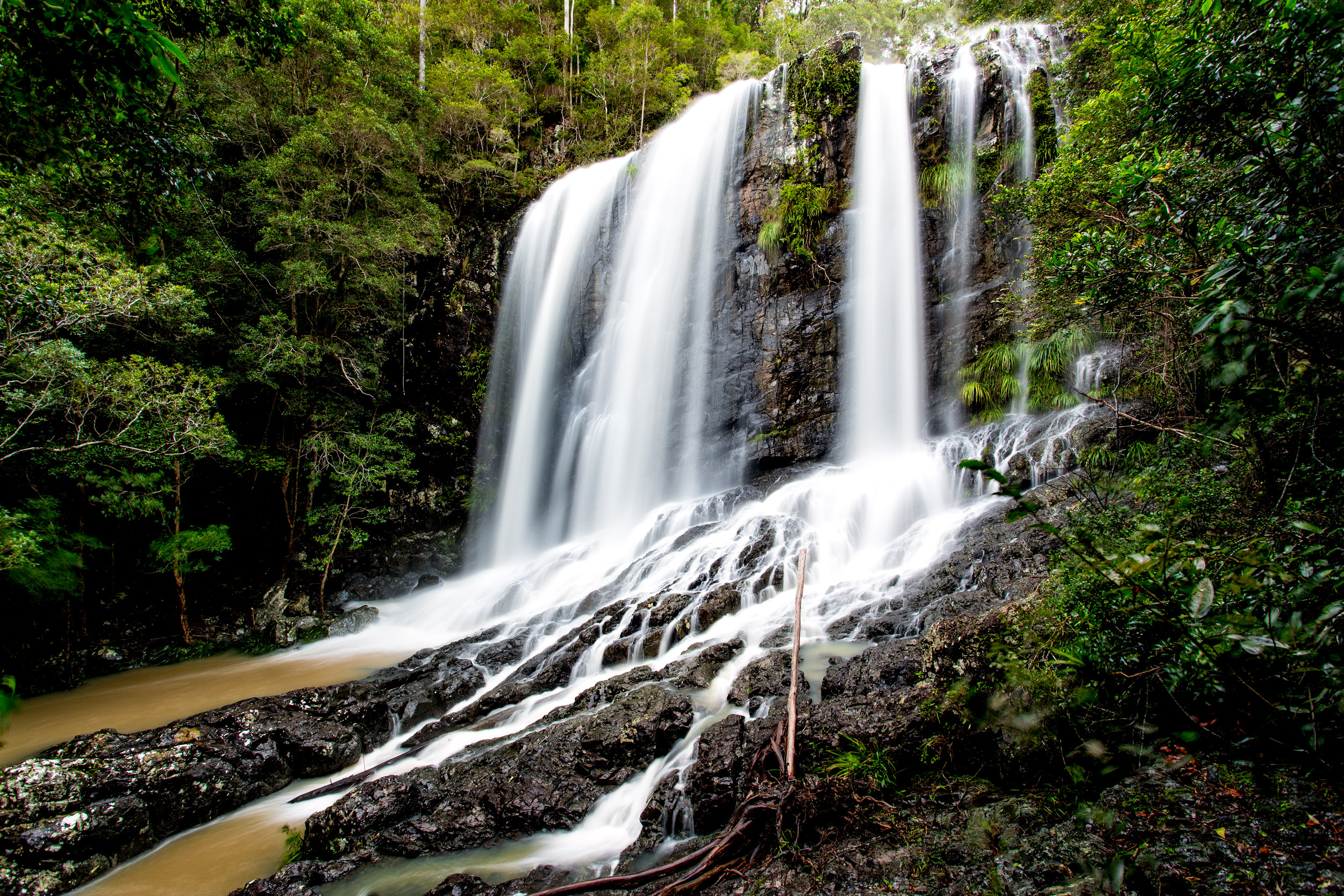 sherwood-forest-woolgoolga-waterfall-nsw.jpg